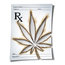 Marijuana Medical Prescription